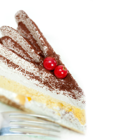 ribes: fresh ribes and whipped cream dessert cake slice with cocoa powder on top