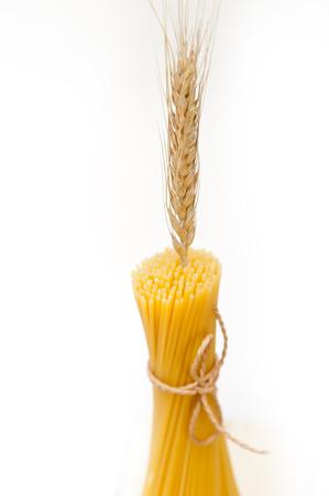durum: organic Raw italian pasta and durum wheat grains crop