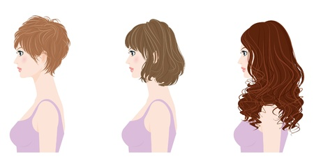 woman hairstyle Stock Vector - 12135588