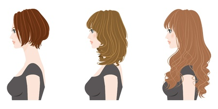 Hairstyle  Woman Vector