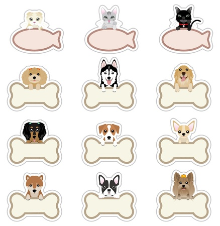 boston terrier: Dog  Cat_Nameplate