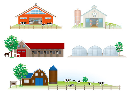 cows grazing: Building   Livestock Illustration