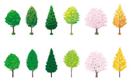 Roadside trees Stock Vector - 24965102