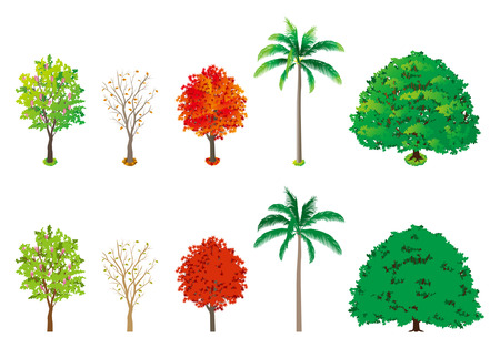 Roadside tree Vector