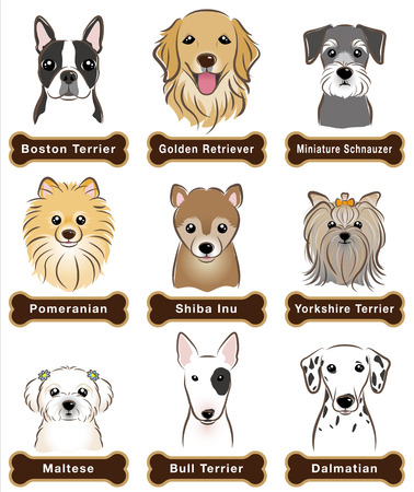 Dog  Nameplate Vector
