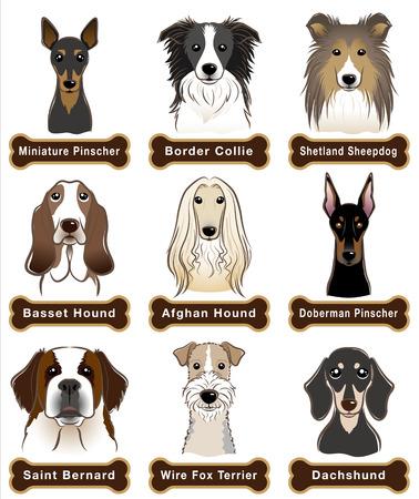 Hond / Naambord
