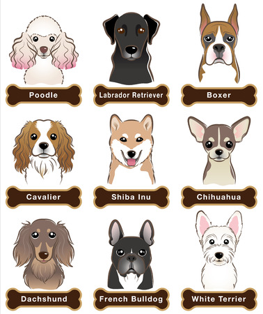 nameplate: Dog  Nameplate