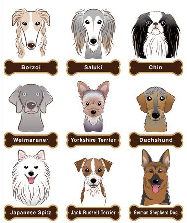 spitz: Dog  Nameplate