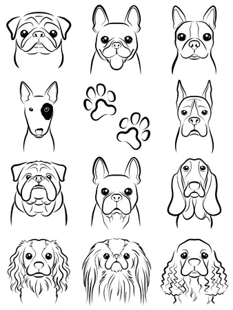 Dog  Line drawing Vector