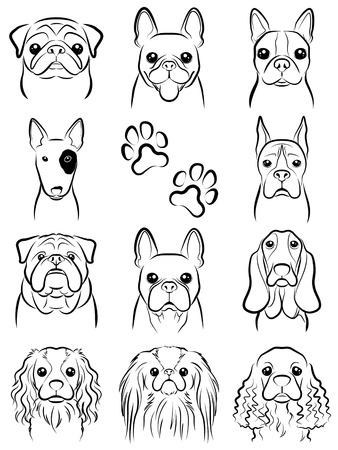 french bulldog: Dog  Line drawing