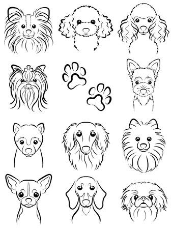 pekingese: Dog  Line drawing