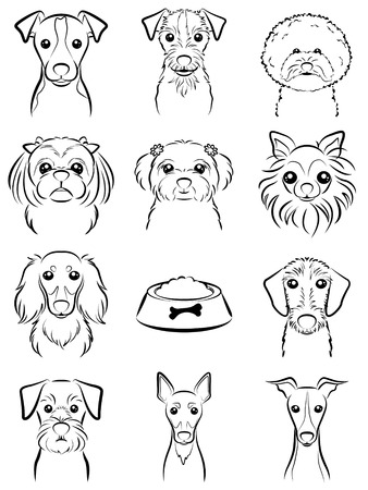 shih: Dog  Line drawing