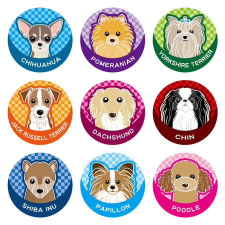 jack russell: Dog  Nameplate
