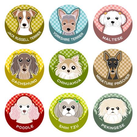 shih tzu: Dog  Nameplate