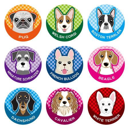 frans: Hond  Naambord