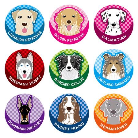 shetlander: Hond  Naambord
