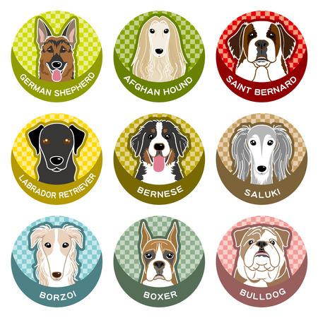saint: Dog  Nameplate
