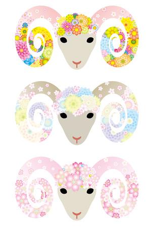 graduate asian: Sheep  Flower Illustration