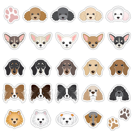 Illustrations of dog face Vectores