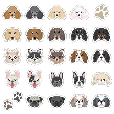 pug dog: Illustrations of dog face Illustration