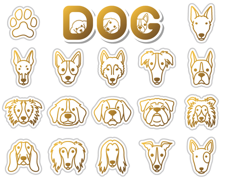border collie: DOG  icon Illustration