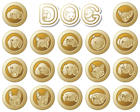 shih: DOG  icon Illustration