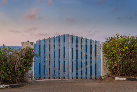 Curved weathered blue wooden garden gate with green bushes at both sides and partly cloudy sky at sunrise time at Montaza public park, Alexandria, Egypt