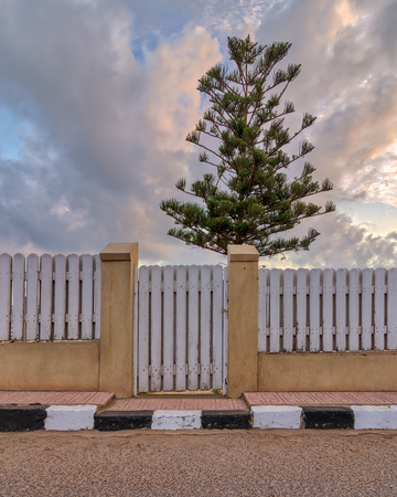 White weathered wooden garden gate and fence with background of single tree and cloudy sky at sunrise time at Montaza public park, Alexandria, Egypt