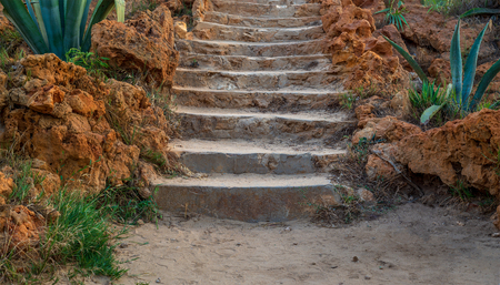 Natural stone stairway with green bushes on both sides at Montaza Public Park in summer time, Alexandria, Egypt
