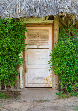 Closed wooden white grunge door surrounded by dense green plants at Montaza public park, Alexandria, Egypt