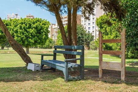 Green empty wooden bench in shadow of tree in urban park on sunny summer day Stock Photo - 132304819