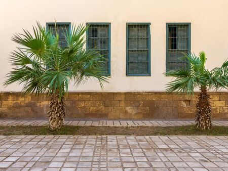 Two small palm trees and tiled stone floor in front of beige wall, and four green window shutters Stock Photo - 136680986