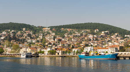 View of Heybeliada island from the sea with summer houses. the island is the second largest one of four islands named Princes Islands in the Sea of Marmara, near Istanbul, Turkey