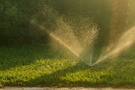 Automatic watering of the lawn during hot weather. Gardening and lawn care concept
