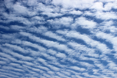Altocumulus clouds  rolls of clouds on a bright day