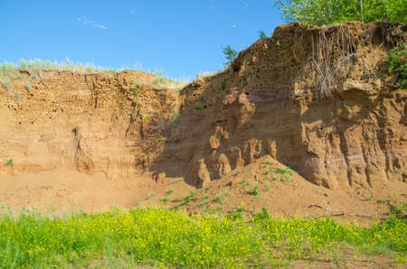 sand quarry: Steep wall of the old thrown sand quarry with nests of swallows.