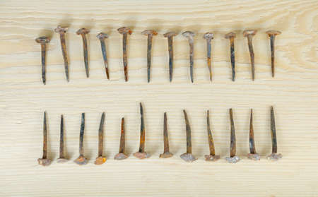 accurately: Old hand-forged nails laid out accurately in two ranks on a pine board.