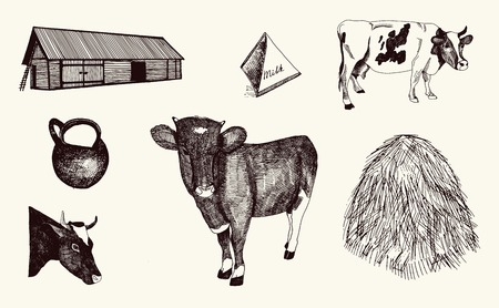cow and milk products on background