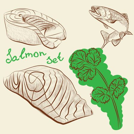 salmon fillet: Set of four raw salmon fillet with parsley and lemon