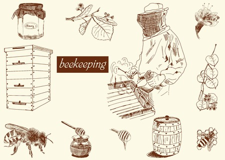 bee on flower: Honey and beekeeping icons