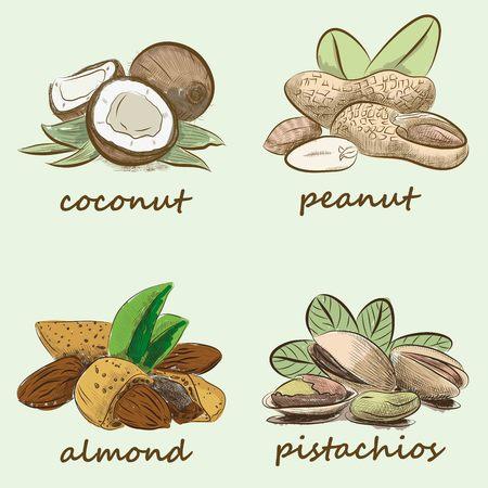 macadamia: nuts set