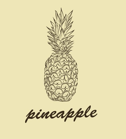 cross hatching: pinapple on background. vector sketches
