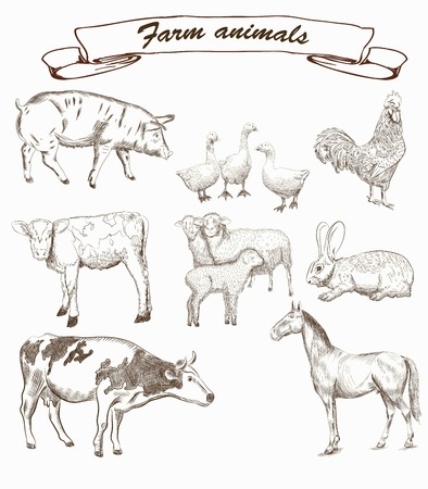 farm animals. set of vector sketches on a white background Иллюстрация