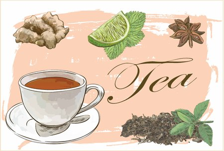 tea set vector sketch with ginger, anice, lime and mint Çizim