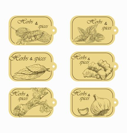 herb and spices storage labels with sketch