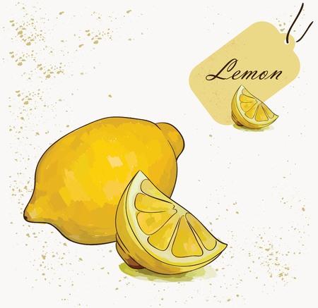 Vector illustrations of beautiful yellow lemon fruit with label in the corner Иллюстрация