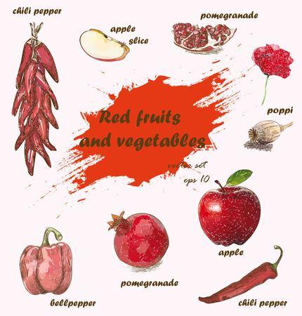 Red Fruits and vegetables vector collection. Fruits set. Vegetables set.