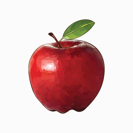 Red vector apple isolatrd on white background