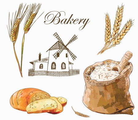 Vector bakery set with bread and slices, wholemeal, wheat ears and mill