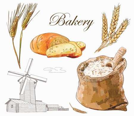 Bakery vector set with engraving mill, bread, wholemeal and wheat ears